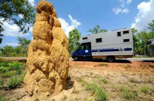 Termitenhügel wird man überall im Topend – dem nördlichen Teil Australiens, finden. (Foto: Abert/abenteuerosten.de)