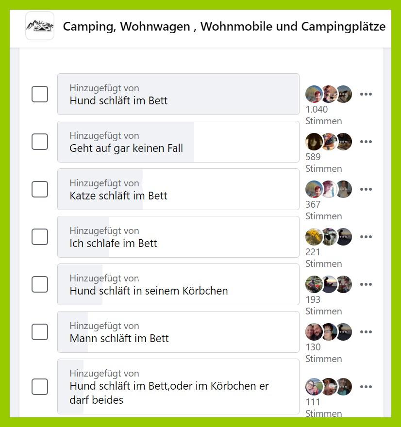 Hund im Bett? Ja oder Nein? Bei der Umfrage ging es hoch her. (screenshot: Facebook)